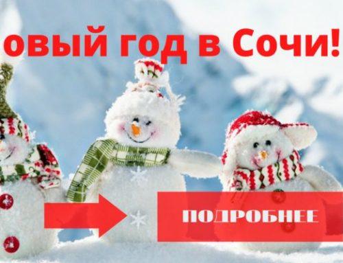 Новый год в Сочи в отелях с банкетом